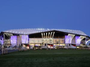 stade_lyon.jpg